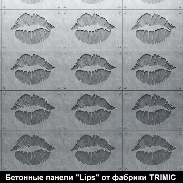 """Фотографии 3D панелей """"Lips"""""""